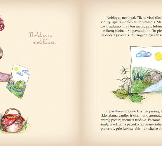 meskiu-istorijos-svajoniu-sodas_tikra_knyga_iliustracija
